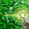 Renovação de licença ambiental