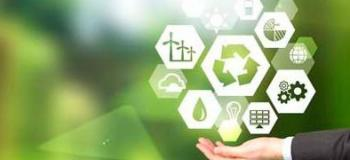 Consultoria ambiental valor